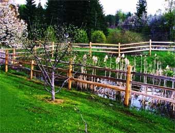Split rail cedar fencing manufactured by Box Lake Lumber
